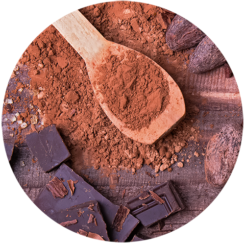 cocoa_ingredienti